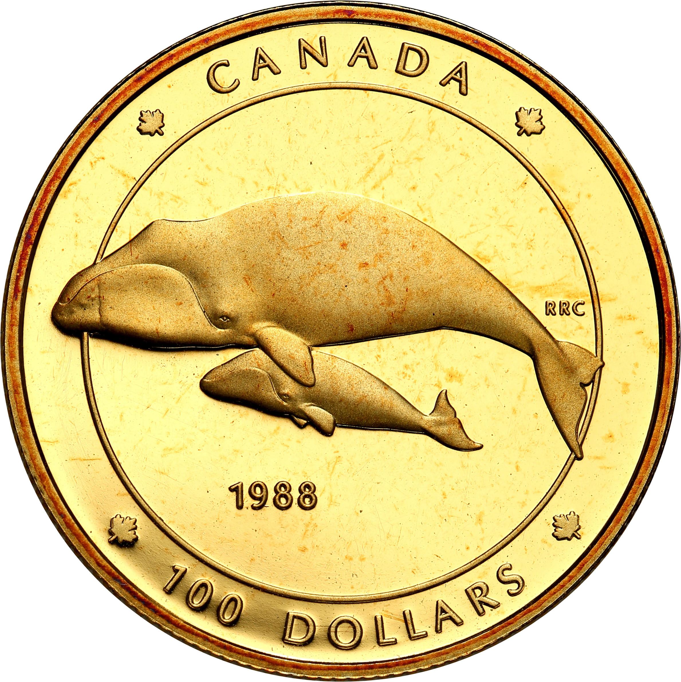 Kanada. 100 dolarów 1988 Wieloryby st. L  - 1/4 uncji złota