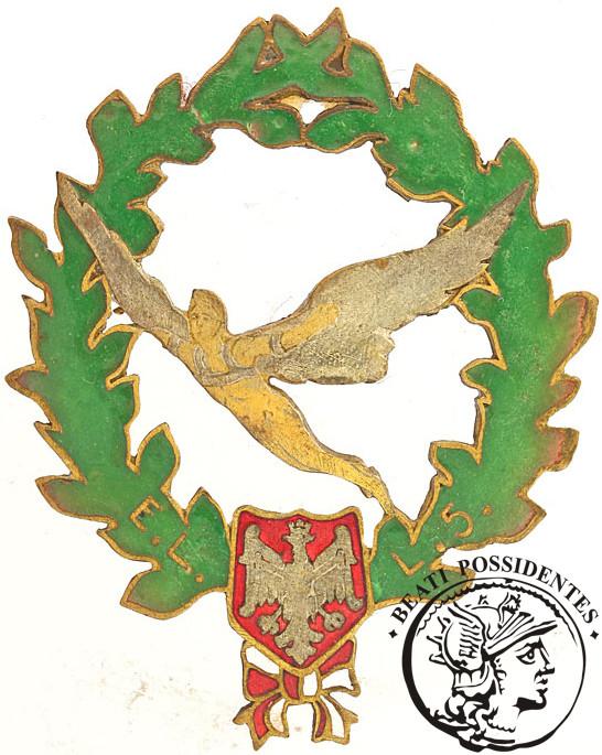 Odznaka 5 Eskadry Lotniczej